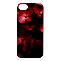 Red Flowers Bouquet in Black Background Photography Apple iPhone 5S Hardshell Case