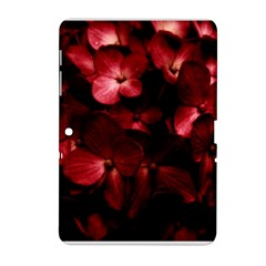 Red Flowers Bouquet in Black Background Photography Samsung Galaxy Tab 2 (10.1 ) P5100 Hardshell Case