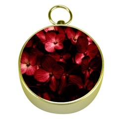 Red Flowers Bouquet in Black Background Photography Gold Compass
