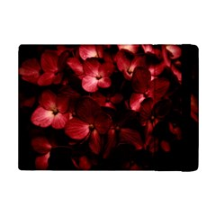 Red Flowers Bouquet in Black Background Photography Apple iPad Mini 2 Flip Case