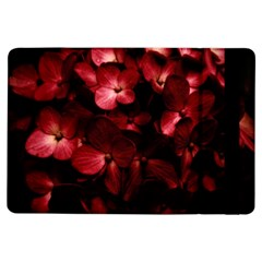 Red Flowers Bouquet in Black Background Photography Apple iPad Air Flip Case