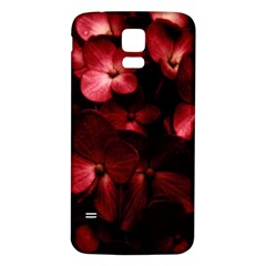 Red Flowers Bouquet in Black Background Photography Samsung Galaxy S5 Back Case (White)