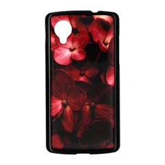 Red Flowers Bouquet in Black Background Photography Google Nexus 5 Case (Black)