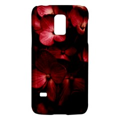 Red Flowers Bouquet in Black Background Photography Samsung Galaxy S5 Mini Hardshell Case