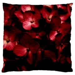Red Flowers Bouquet In Black Background Photography Large Flano Cushion Case (two Sides)