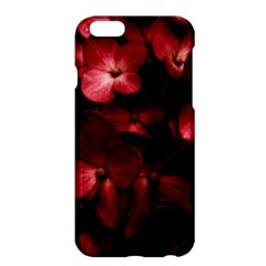 Red Flowers Bouquet In Black Background Photography Apple Iphone 6 Plus Hardshell Case