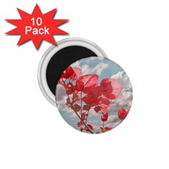 Flowers In The Sky 1 75  Button Magnet (10 Pack)