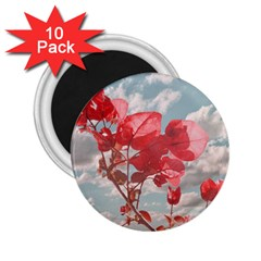 Flowers In The Sky 2 25  Button Magnet (10 Pack)