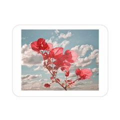 Flowers In The Sky Double Sided Flano Blanket (Mini)