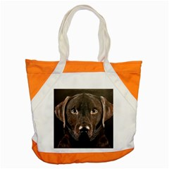 Chocolate Lab Accent Tote Bag