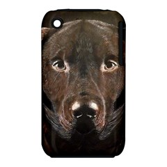 Chocolate Lab Apple iPhone 3G/3GS Hardshell Case (PC+Silicone)