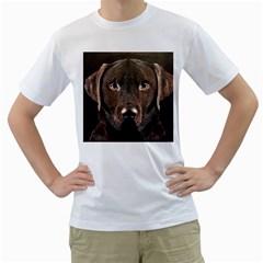Chocolate Lab Men s T-Shirt (White)