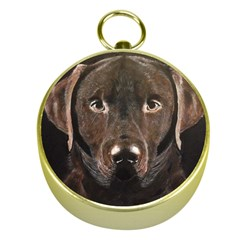 Chocolate Lab Gold Compass