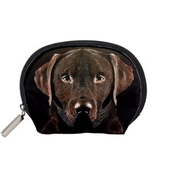 Chocolate Lab Accessory Pouch (small)