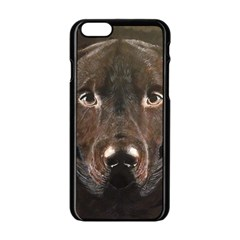 Chocolate Lab Apple Iphone 6 Black Enamel Case