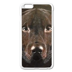 Chocolate Lab Apple Iphone 6 Plus Enamel White Case