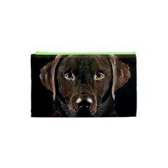 Chocolate Lab Cosmetic Bag (XS)