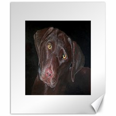 Inquisitive Chocolate Lab Canvas 20  x 24  (Unframed)