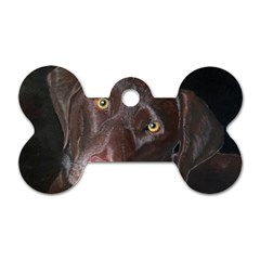 Inquisitive Chocolate Lab Dog Tag Bone (two Sided)