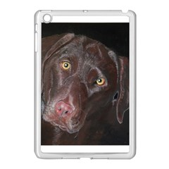 Inquisitive Chocolate Lab Apple Ipad Mini Case (white)