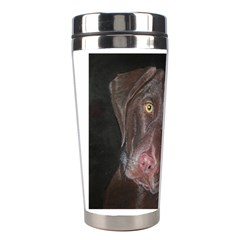 Inquisitive Chocolate Lab Stainless Steel Travel Tumbler