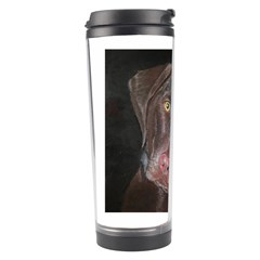 Inquisitive Chocolate Lab Travel Tumbler