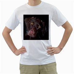 Inquisitive Chocolate Lab Men s T-Shirt (White)