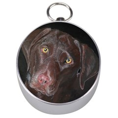 Inquisitive Chocolate Lab Silver Compass