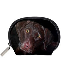 Inquisitive Chocolate Lab Accessory Pouch (Small)