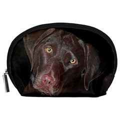 Inquisitive Chocolate Lab Accessory Pouch (Large)