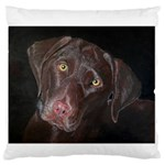 Inquisitive Chocolate Lab Standard Flano Cushion Case (Two Sides) Back