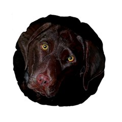 Inquisitive Chocolate Lab 15  Premium Flano Round Cushion