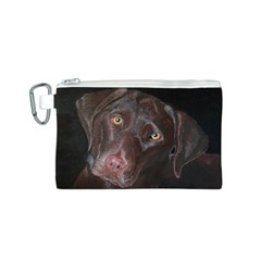 Inquisitive Chocolate Lab Canvas Cosmetic Bag (small)