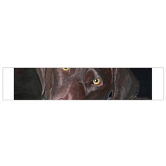 Inquisitive Chocolate Lab Flano Scarf (Small)