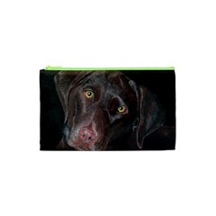 Inquisitive Chocolate Lab Cosmetic Bag (XS)