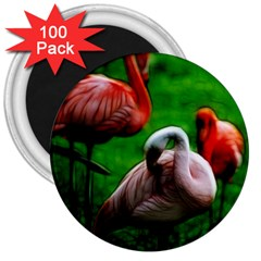 3pinkflamingos 3  Button Magnet (100 Pack)