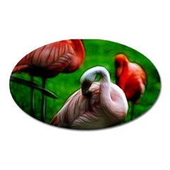 3pinkflamingos Magnet (oval)