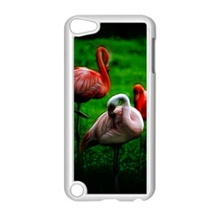 3pinkflamingos Apple Ipod Touch 5 Case (white)