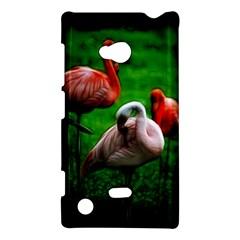 3pinkflamingos Nokia Lumia 720 Hardshell Case