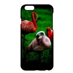 3pinkflamingos Apple Iphone 6 Plus Hardshell Case