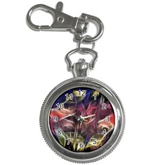 Abstract Of A Cold Sunset Key Chain Watch
