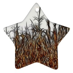 Abstract Of A Cornfield Star Ornament (two Sides)