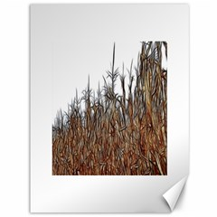 Abstract Of A Cornfield Canvas 36  X 48  (unframed)