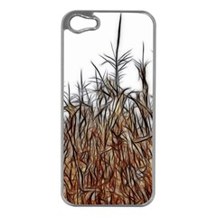 Abstract Of A Cornfield Apple Iphone 5 Case (silver)
