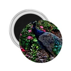 Peacock With Roses 2 25  Button Magnet