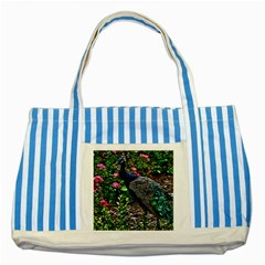Peacock With Roses Blue Striped Tote Bag