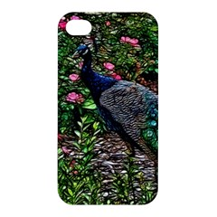 Peacock With Roses Apple Iphone 4/4s Hardshell Case