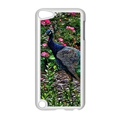 Peacock with roses Apple iPod Touch 5 Case (White)