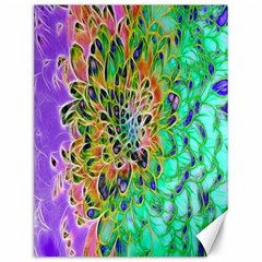 Abstract Peacock Chrysanthemum Canvas 12  X 16  (unframed)