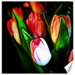 Abstract Pink Tulips Canvas 20  x 20  (Unframed)